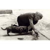 Archív képek a családtól - Feledy Gyula  (1928-2010)  (78)