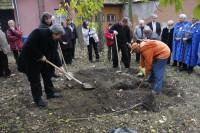 Alapítás, diófa ültetés 2009.11.14. (36)