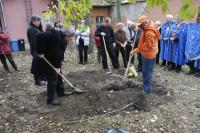 Alapítás, diófa ültetés 2009.11.14. (37)